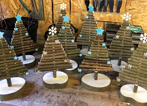 FitzRoy's Pop Up Shop - Christmas Trees