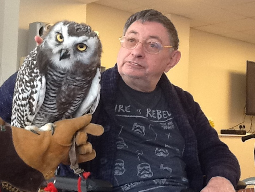 Ted Snoad with a 12 week old snowy owl called Blizzard.